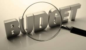 DOES YOUR BUSINESS HAVE A BUDGET?