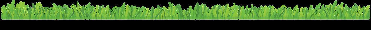 Green grassy land image