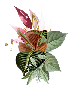 PY-banner-floral-01_edited.png