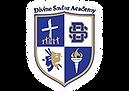 Divine Savior Academy