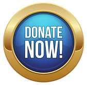 Donate Now button.png