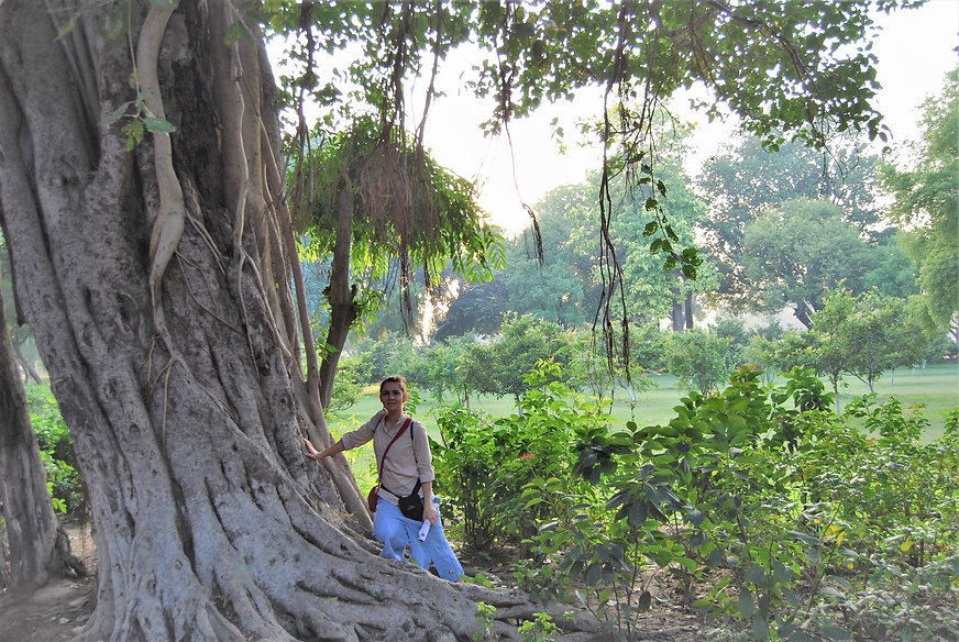 Indie, Ogrody przy Taj Mahal w Agrze.JPG