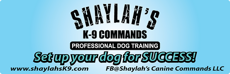 shaylahs-banner.png
