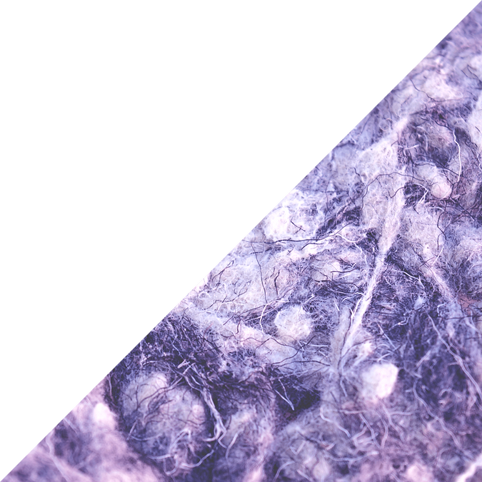 purpple triangle.png