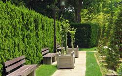 39878474-garden-wallpapers