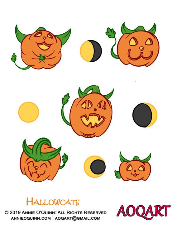 pumpkin cat collection