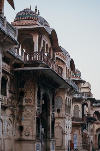 Indie, Jaipur, monkey temple