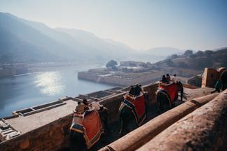Indie, Jaipur