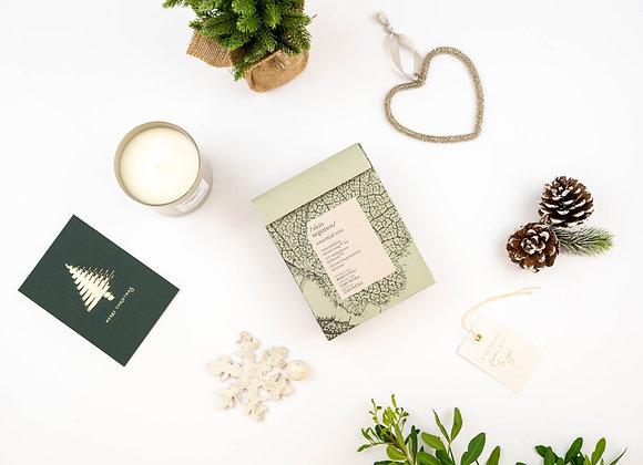 Skin Regimen Essentials Trio Kit