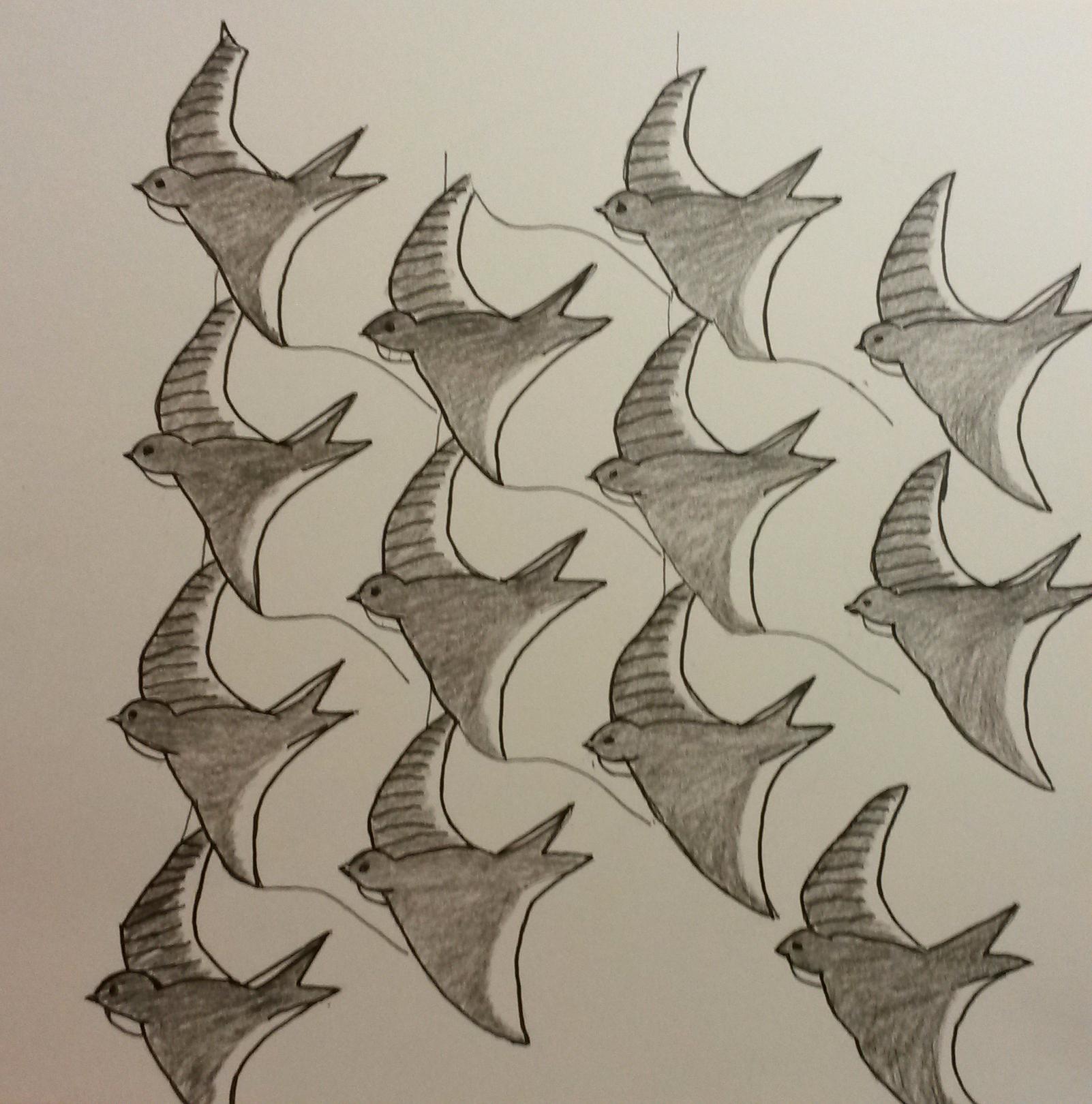 19 Ruit Zwaluw