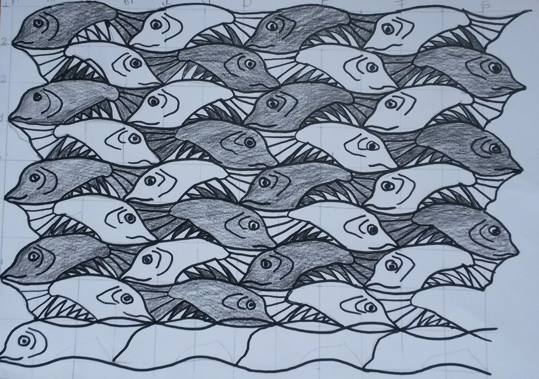 25 Zwartwitvissen