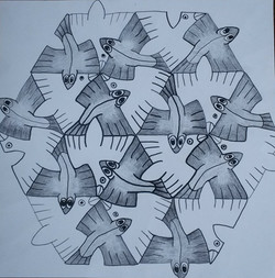 24 Vissenvogel