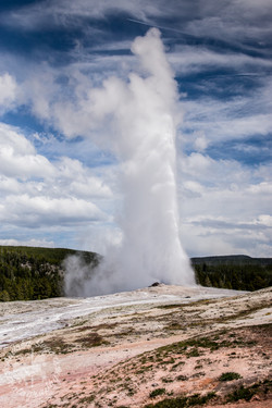 Yellowstone-09632