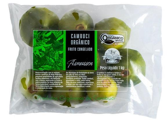 Fruto Orgânico de Cambuci (congelado) 1kg