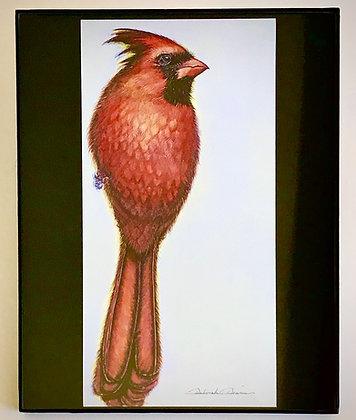 Cardinal M1 Print