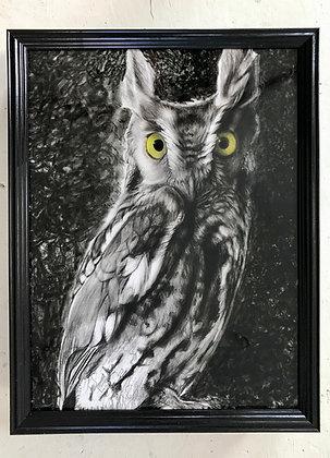 Owlistaire