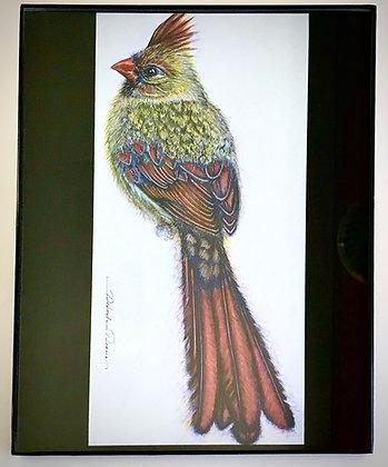 Cardinal F1 Print
