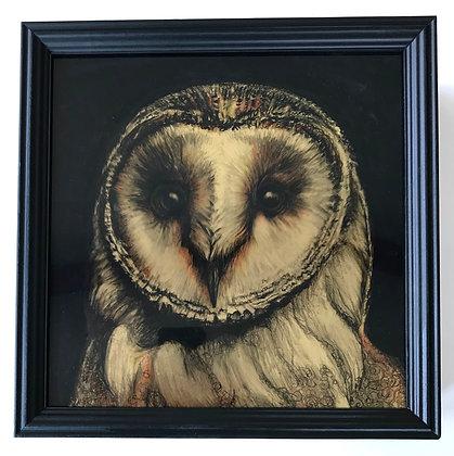 Owlinore