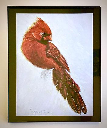 Card Cardinal Print