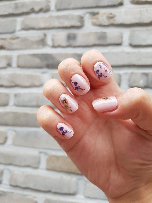 Gel nail strips n.4512 - Nascita di Venere