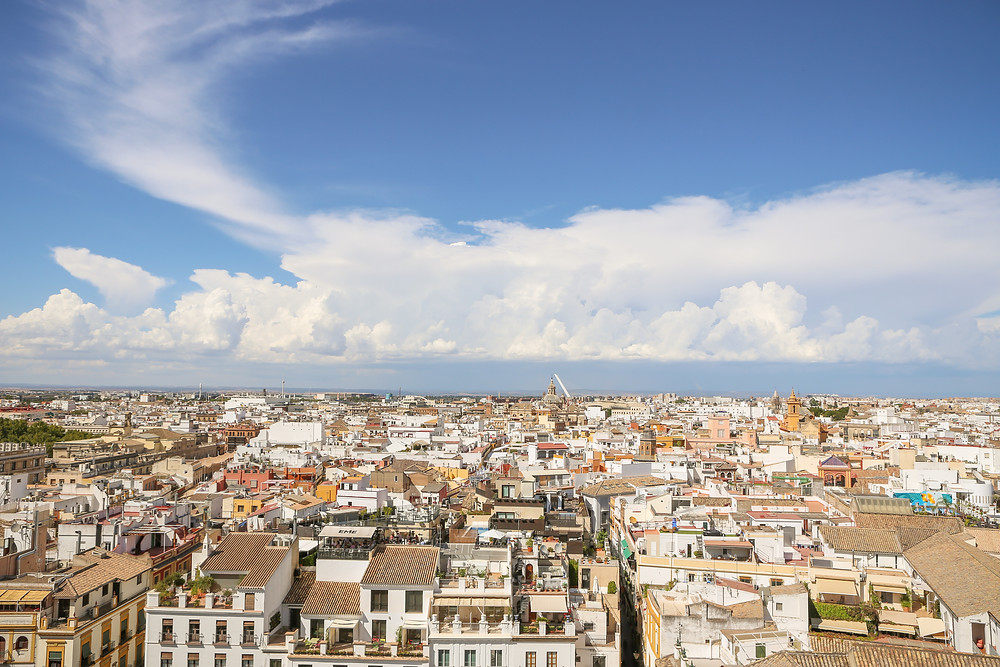 Sevilla, España, Seville, Spain, study abroad, Rose Wine Photography, Europe, mudejar, mudéjar, Cathedral, Gothic, Catedral, views of Sevilla