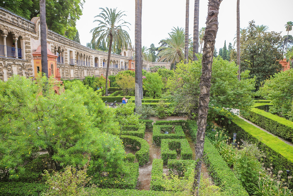 Sevilla, España, Seville, Spain, study abroad, Rose Wine Photography, Alcázar, Alcazar, Gardens, Game of Thrones