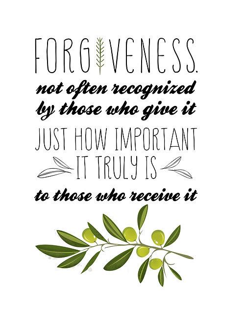 Forgiveness - Olive Branch
