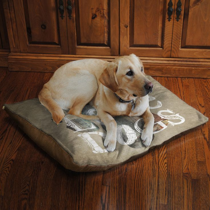 Pet Bed Licensed from Laural Home