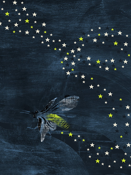 Firefly / Lightning Bug, Trail of Stars