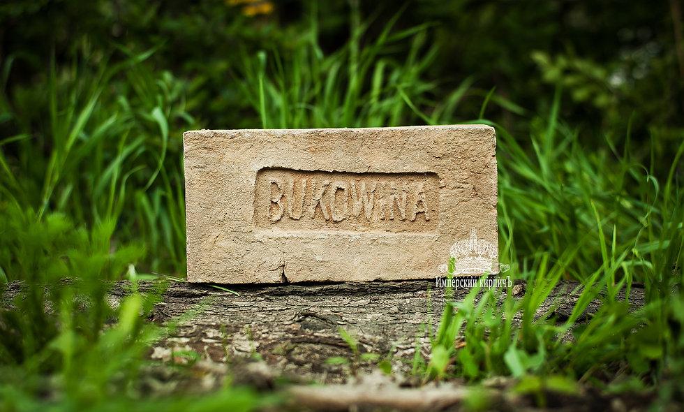 Старинный кирпич с клеймом Bukowina
