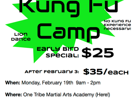 President's Day Kung Fu Camp