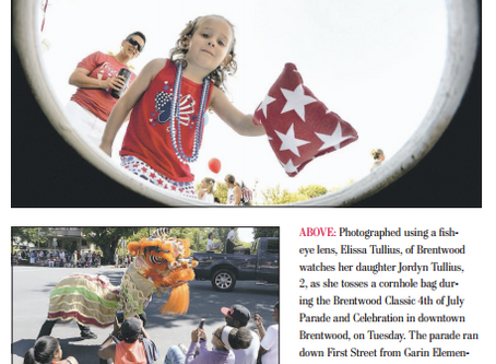 2017 Fourth of July Parade/Picnic - Recap