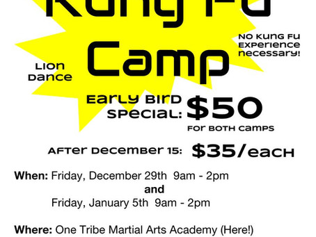 Winter Kung Fu Camps