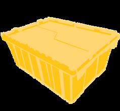 closed food box.png