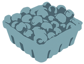 blueberries texture.png