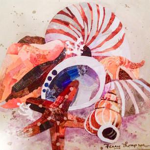 shells 2016.jpg