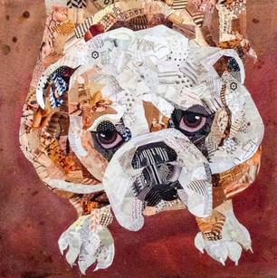 anne lyon's comminsioned bulldog 2016