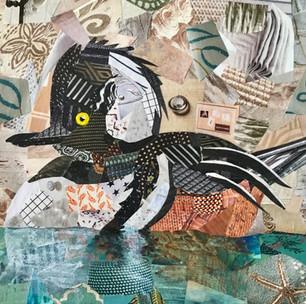 Male Hooded Merganger Duck