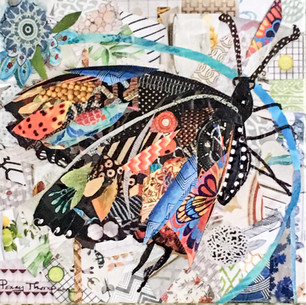 swallow tiger tail butterfly 2016