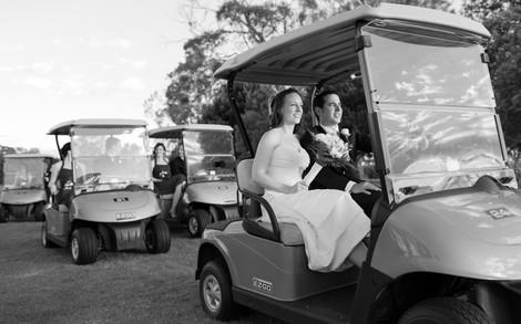 Weddings Cart.jpg