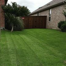 Weed Control in Celina Texas