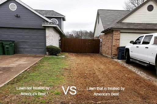 lawncare treatment difference