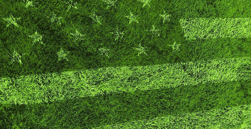 flag_grass_banner.jpg