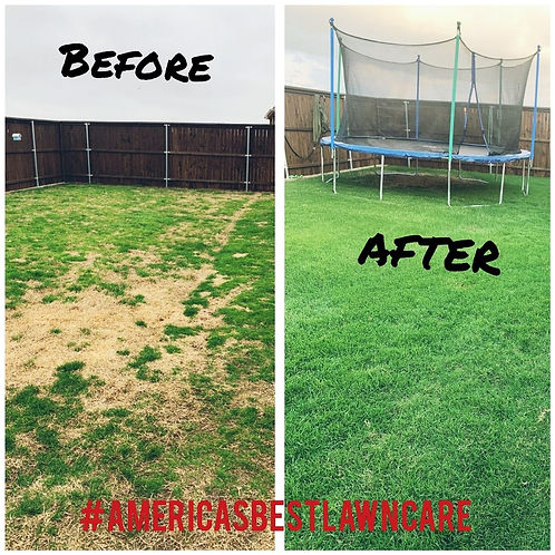 before and after lawncare.jpg
