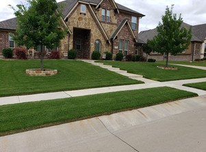 Weed Control in Frisco Texas