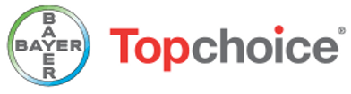 Topchoice Logo.png