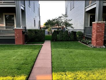 lawn care Prosper Texas.PNG.png
