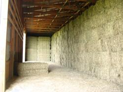 Old Fort Farm, 2010, Kentucky 145