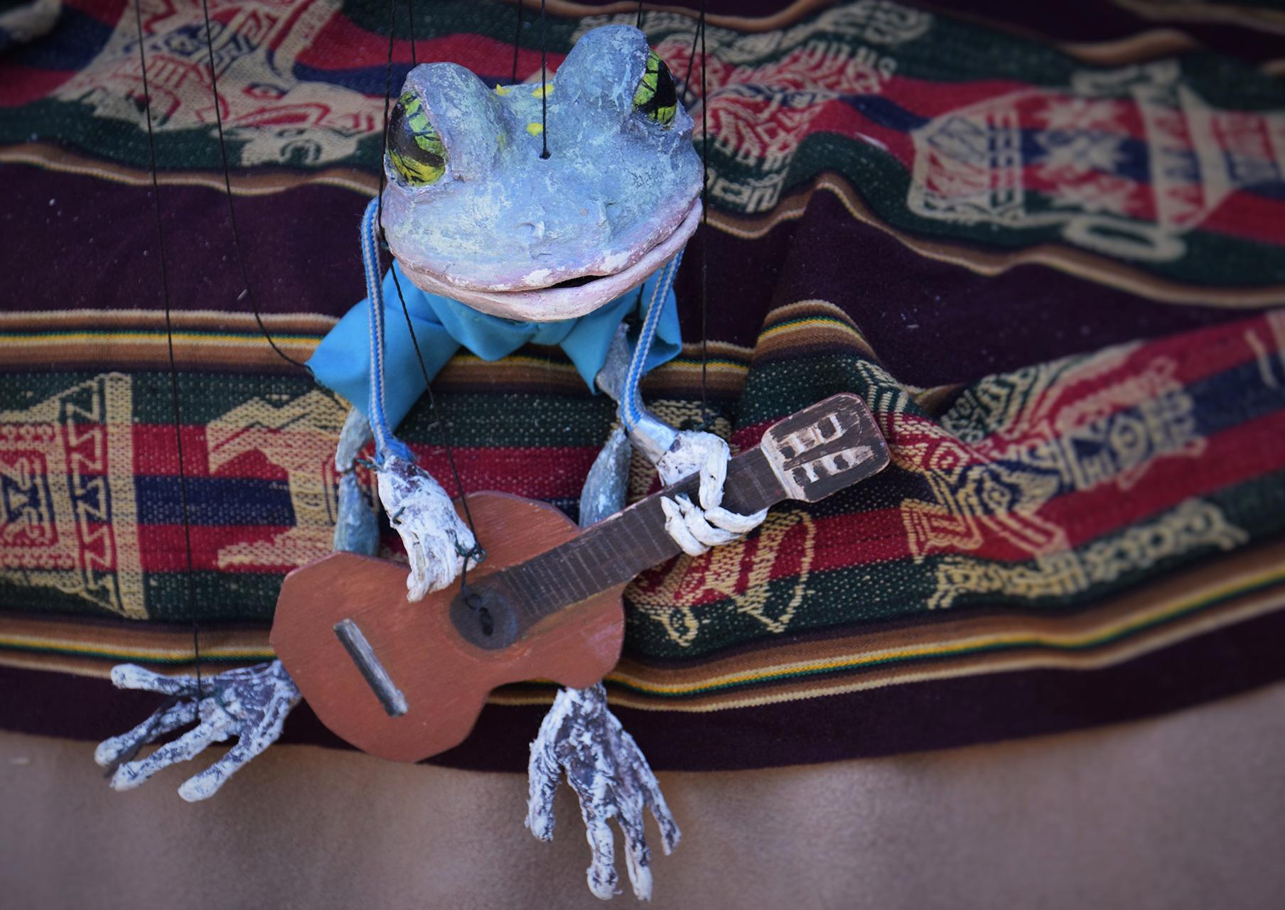 der Frosch, Sänger und Gitarrero