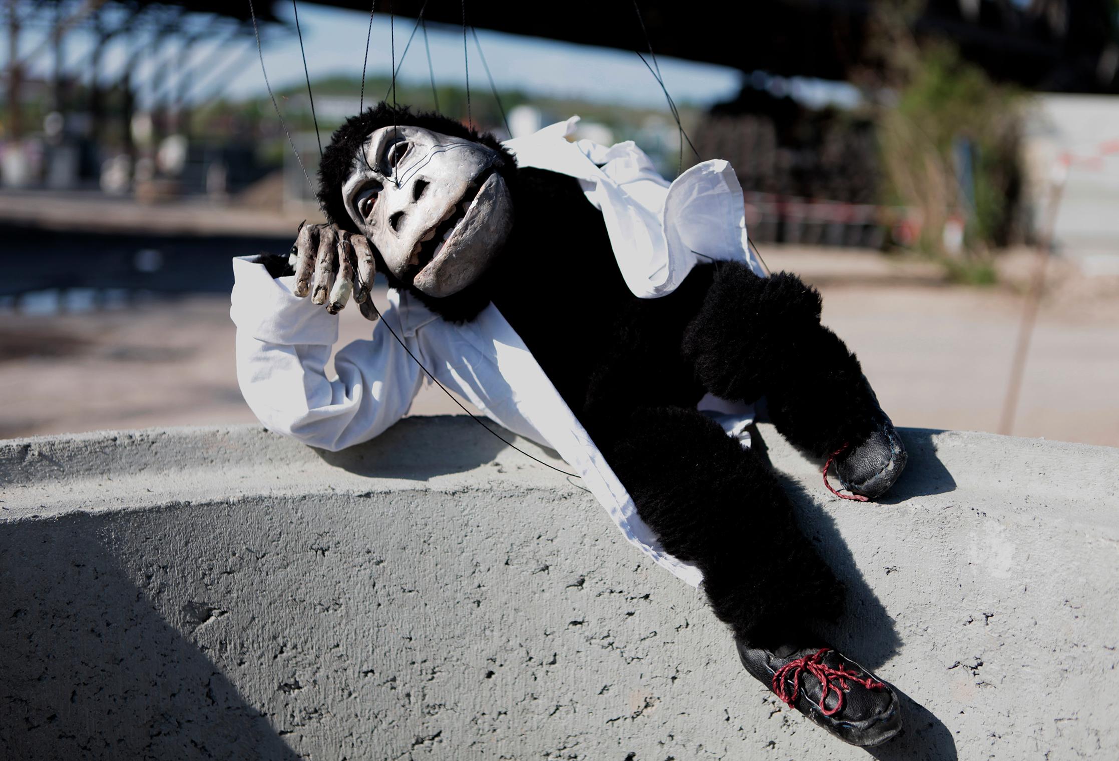 el mono sapiens, der Denker